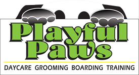playpul-paws-updated-logo