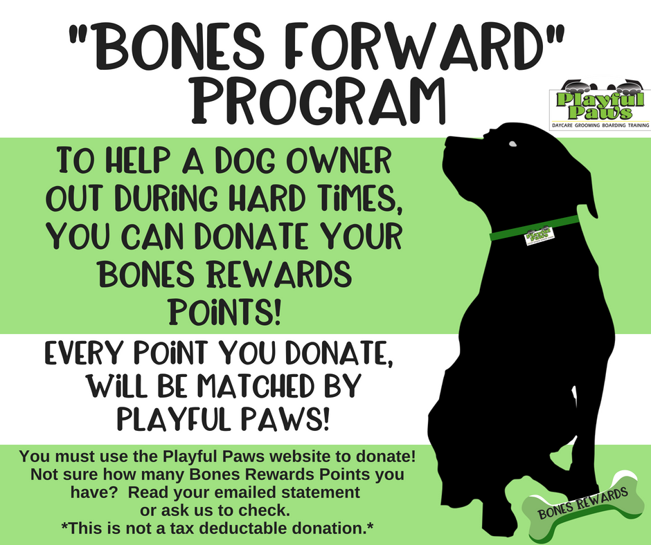 Bones-Fourward-Program-1